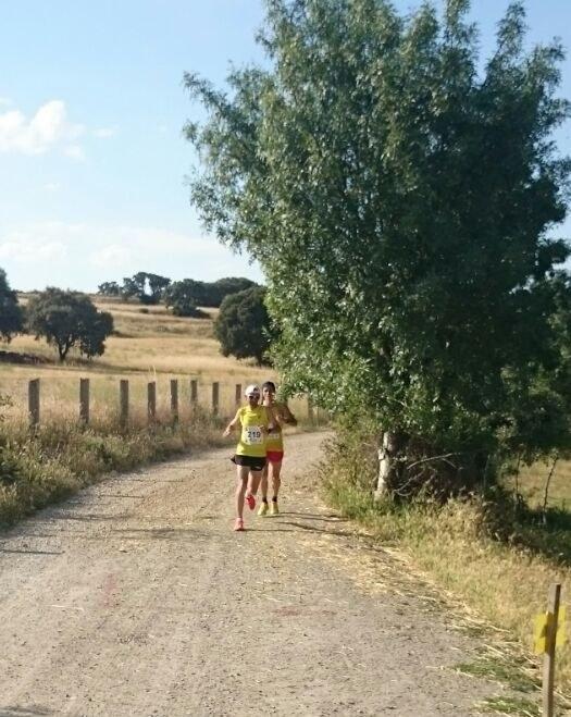 carrera tramo 2 (10)