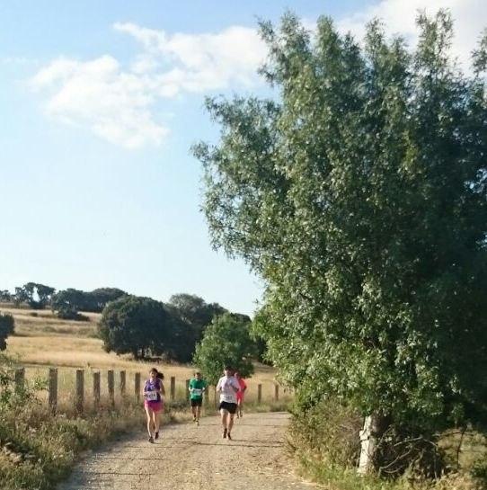 carrera tramo 2 (14)