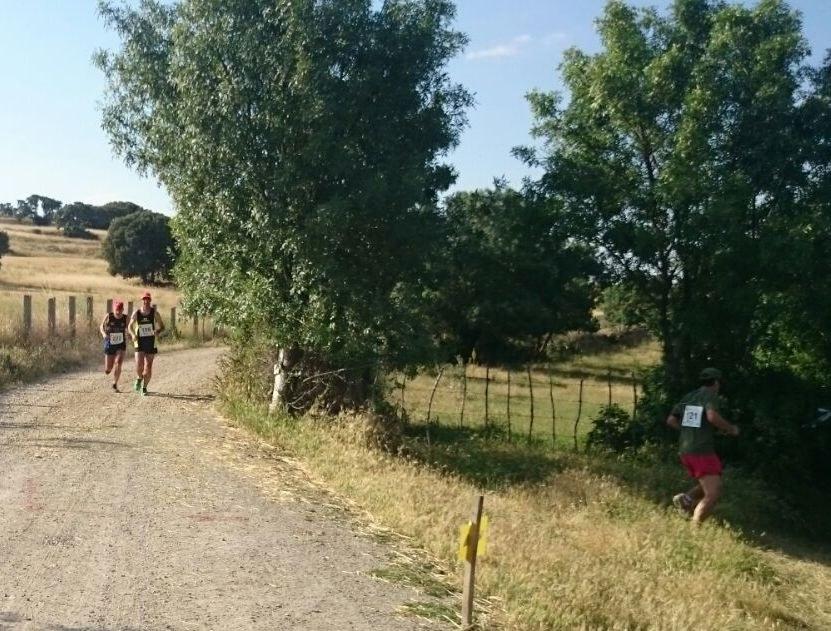 carrera tramo 2 (25)