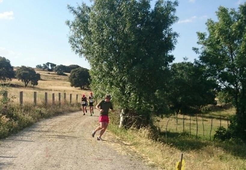carrera tramo 2 (8)