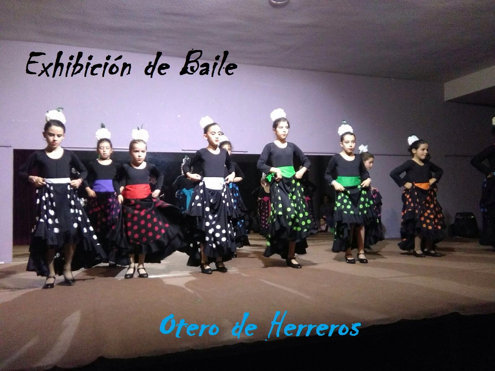 Exhibición Baile (2)