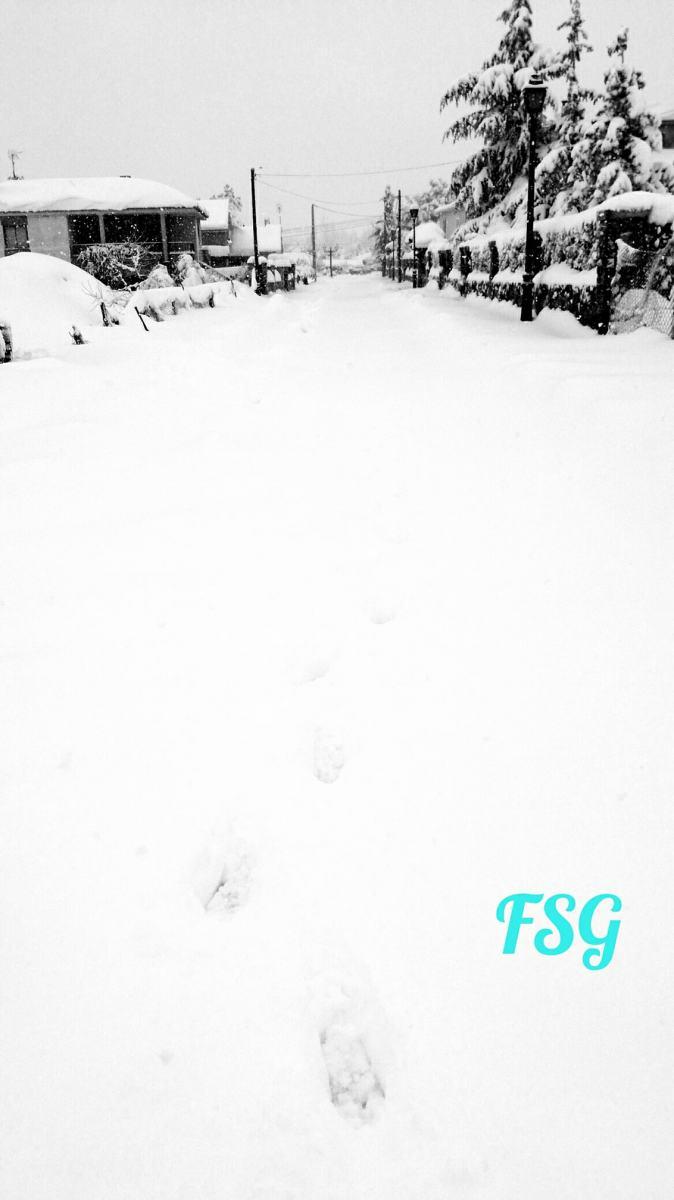 dias nieve (12)