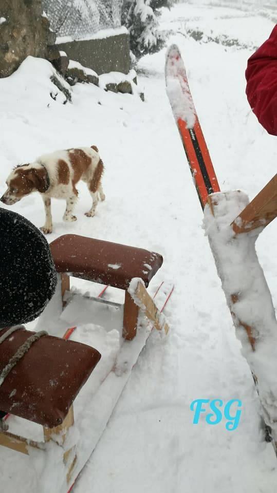 dias nieve (7)