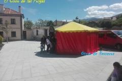 El circo de las pulgas (8)